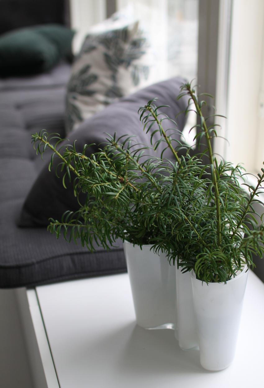 ekologinen joulu